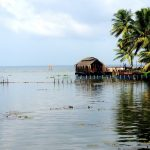 Vembanad Lake – Longest Lake in India